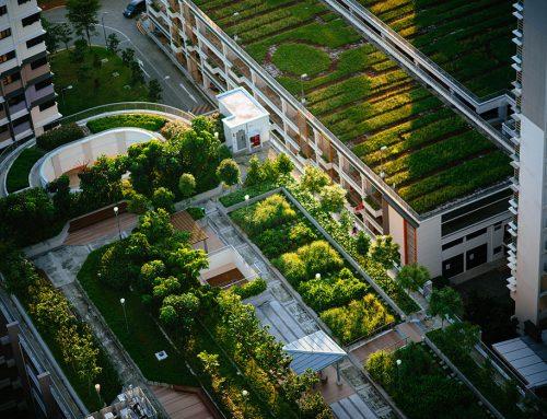Een groene stad heeft de toekomst