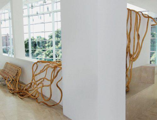 Wat spaghetti kan doen met de leefomgeving van de toekomst.